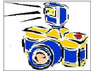 dfl-snapshot-21